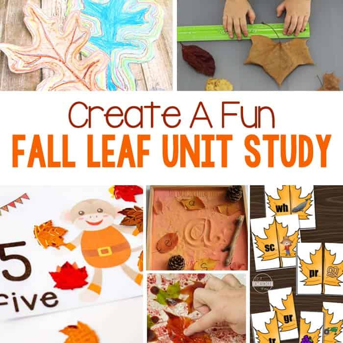 Leaf Themed Activities For Kids
