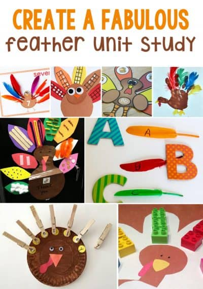 Ideas For A Fabulous Feather Themed Unit Study For Thanksgiving