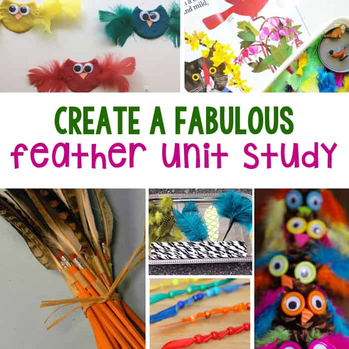 40+ Ideas For A Fabulous Feather Themed Unit Study