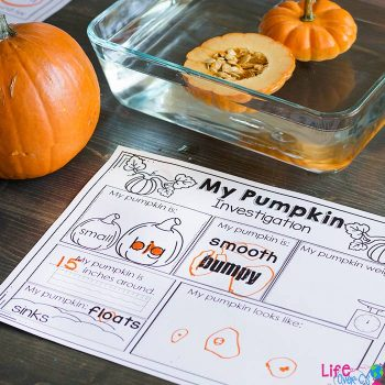These fun pumpkin STEM investigations for preschoolers are a great addition to your fall theme.