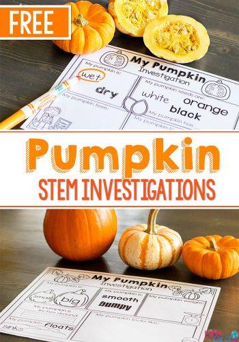Pumpkin STEM investigations for preschoolers. Free STEM printable for pumpkin investigation