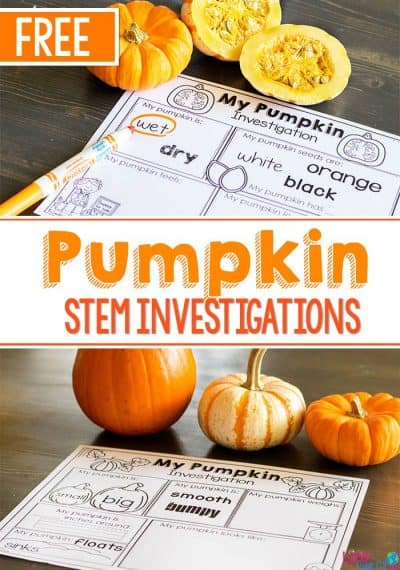 Pumpkin STEM investigations for preschoolers. Free STEM printable for pumpkin investigation