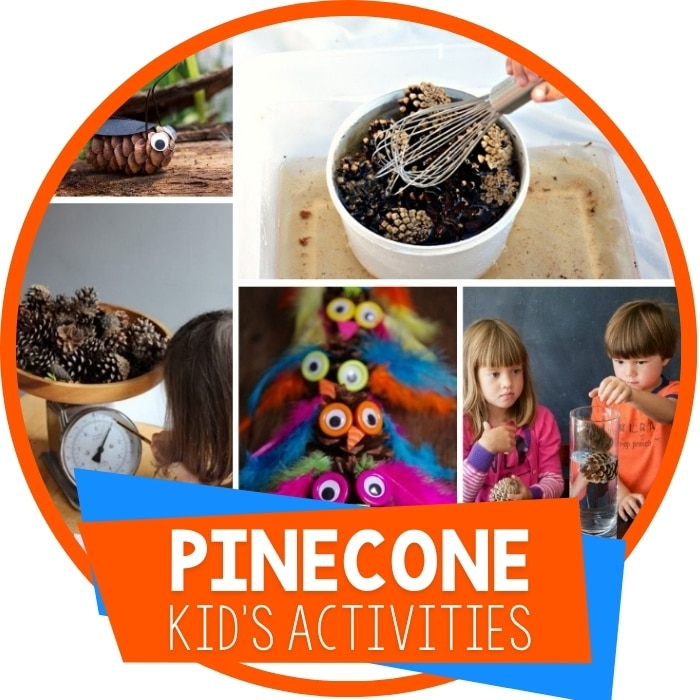 Pine Cone Activities For Kids Featured Image