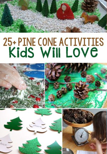 Pine Cone Activities: Evergreen tree and pine cone themed activities as well as activities to help children learn about pine cones!