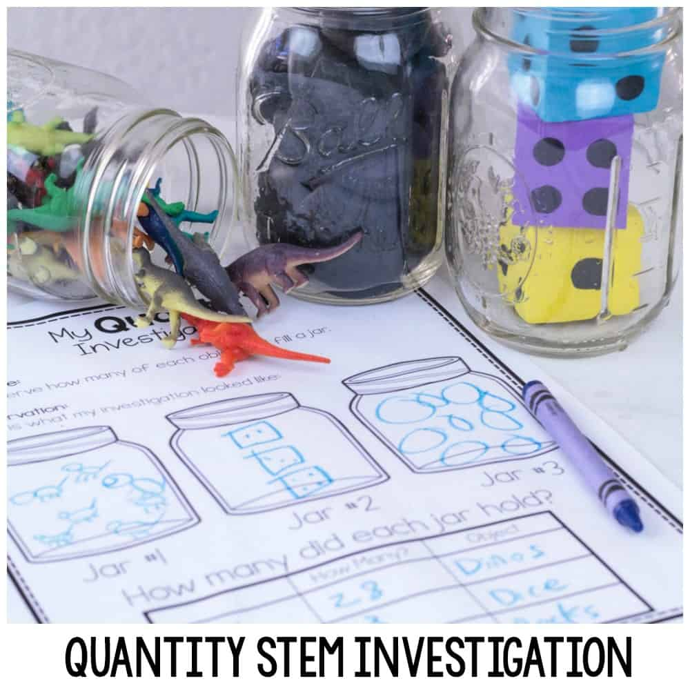 Quantity STEM Investigation and Printable