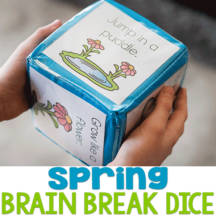 Printable Spring Themed Brain Break Dice
