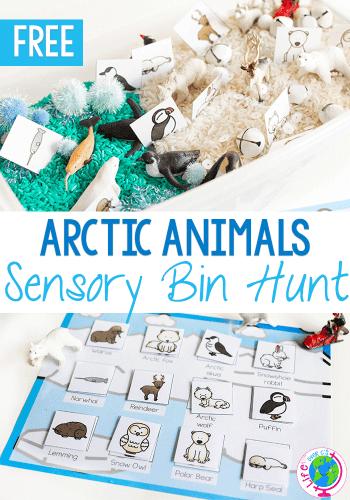 Free printable arctic animal matching game for sensory bins.