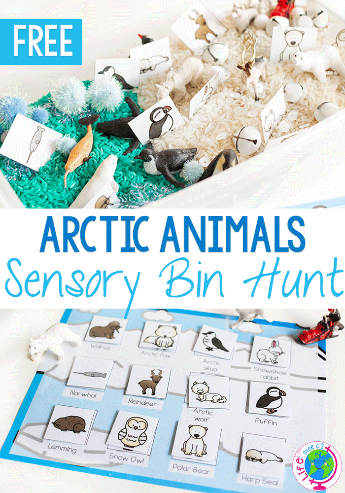 Free printable arctic animal matching game for sensory bins.