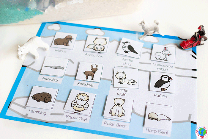 Free printable arctic animal game for preschoolers.