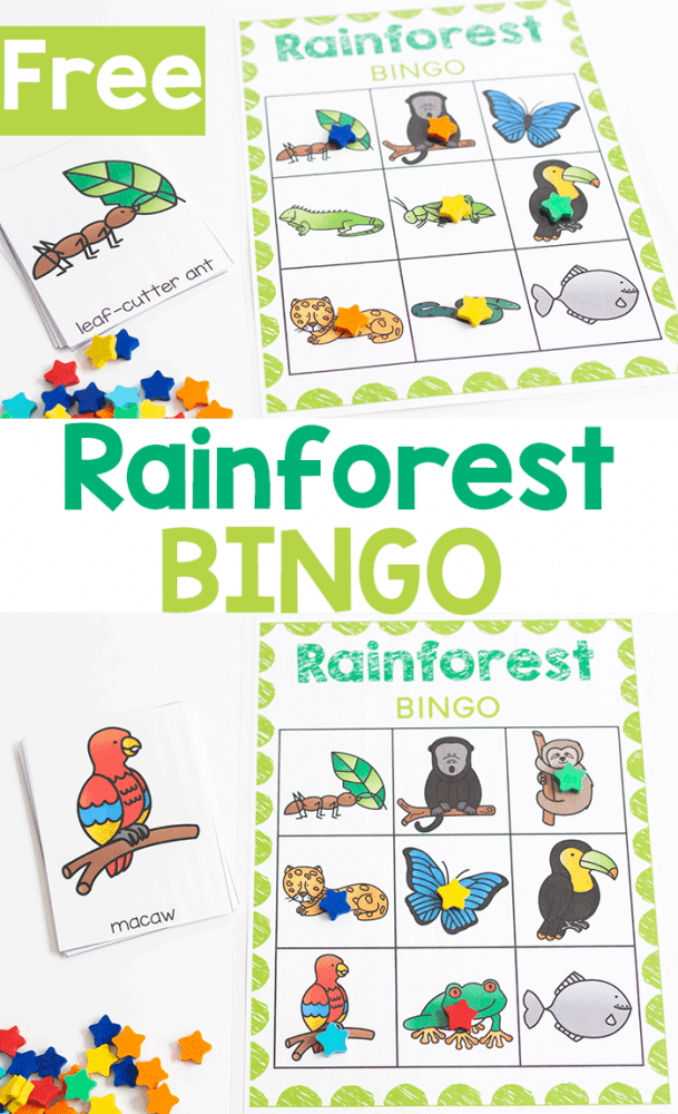 Free printable Rainforest BINGO game for preschool.