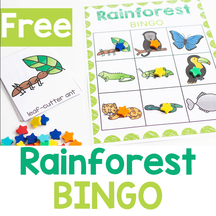 Free printable Rainforest BINGO activity for kindergarten.