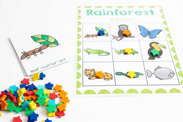 Free printable science activity for your Rainforest Animal theme.