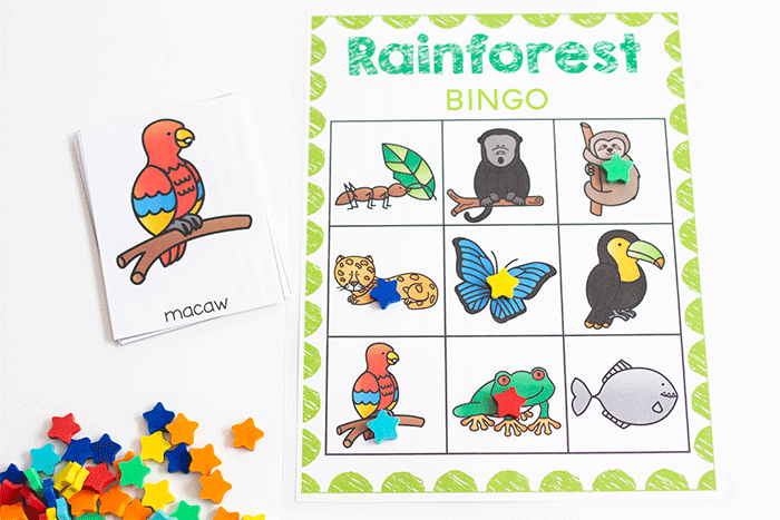 Free Rainforest BINGO game for pre-k.
