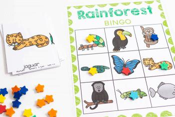Free printable rainforest BINGO games for preschool science lessons.