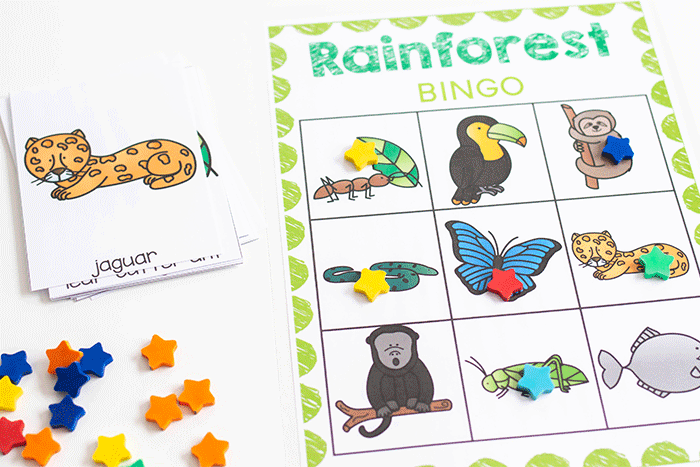 Free printable rainforest BINGO games for preschool science lessons.