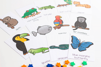 Match rainforest animals with this simple Rainforest BINGO game.