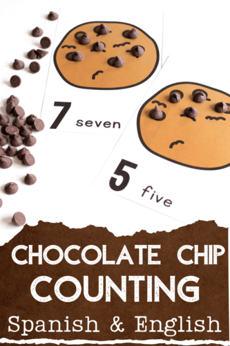 Chocolate chip counting cards for counting to 10 make preschool math centers so much fun!