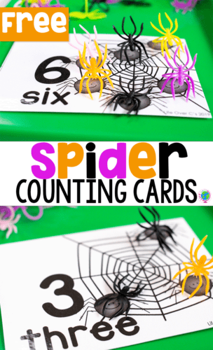 Free printable spider counting cards for numbers 1-10. Use with spider rings for counting
