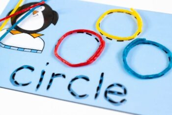 Penguin themed circle recognition activity.