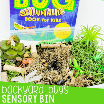 Create a bug sensory bin for preschoolers to use during your insect unit or when you are learning about life cycles with your preschoolers. They can learn about habitats, what bugs are and what food they eat with this fun bug sensory bin.