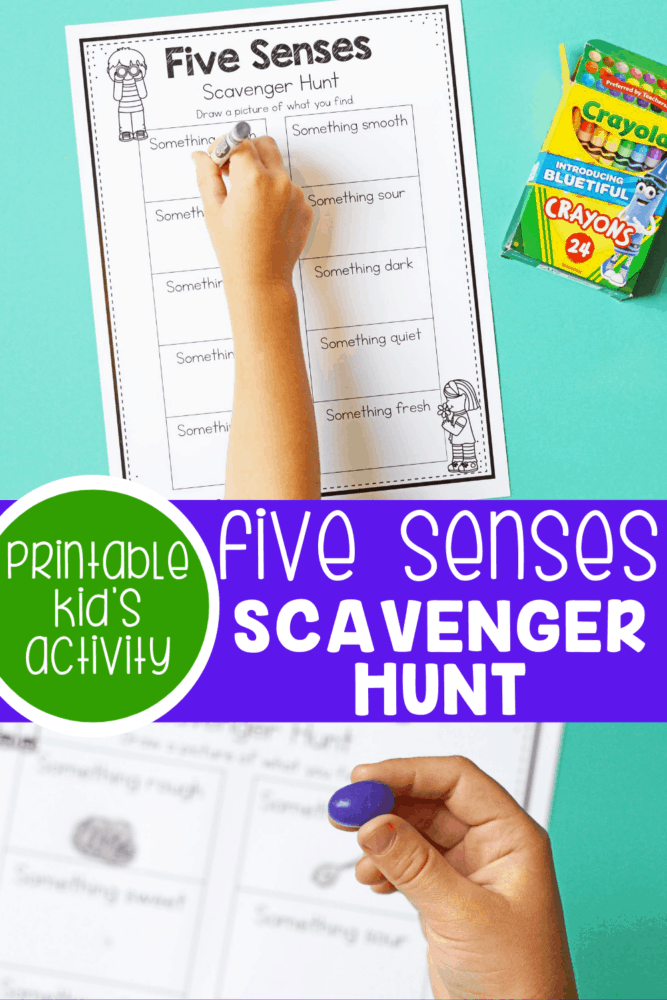 Five Senses Scavenger Hunt printable activity sheet.