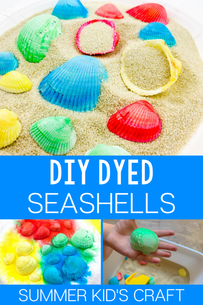 DIY Dyed Seashells