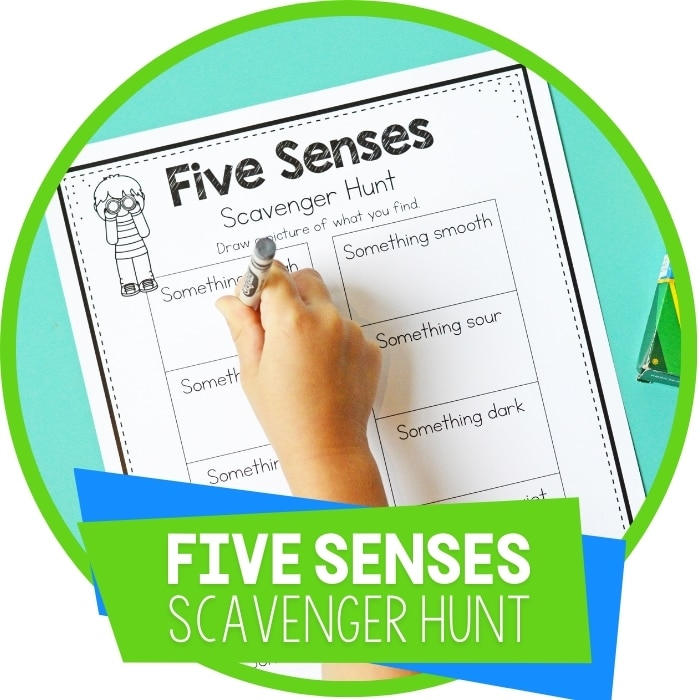Go on a Scavenger Hunt with This Five Senses Activity