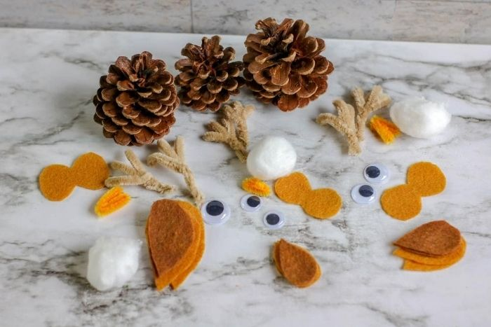 All the pieces needed to make pinecone owls.