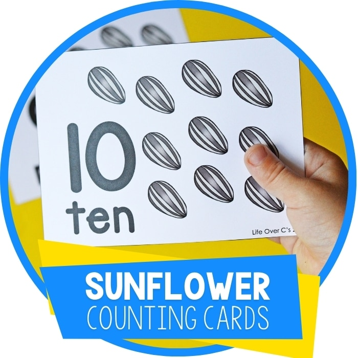 Free Printable Sunflower Seed Counting Cards for Preschool