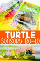 Turtle Sensory Bottle