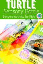 Turtle Sensory Bottle for Kids