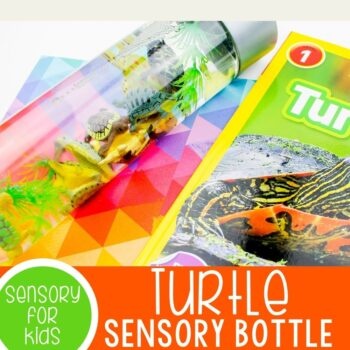 Turtle Sensory Bottle for Kids