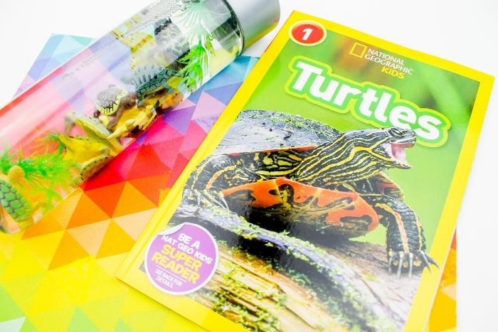 National Geographic Kids magazine about Turtles next to a turtle themed sensory bottle.