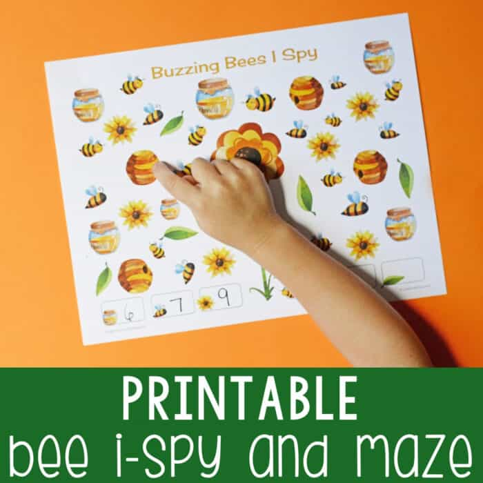 Bee I-Spy and Maze