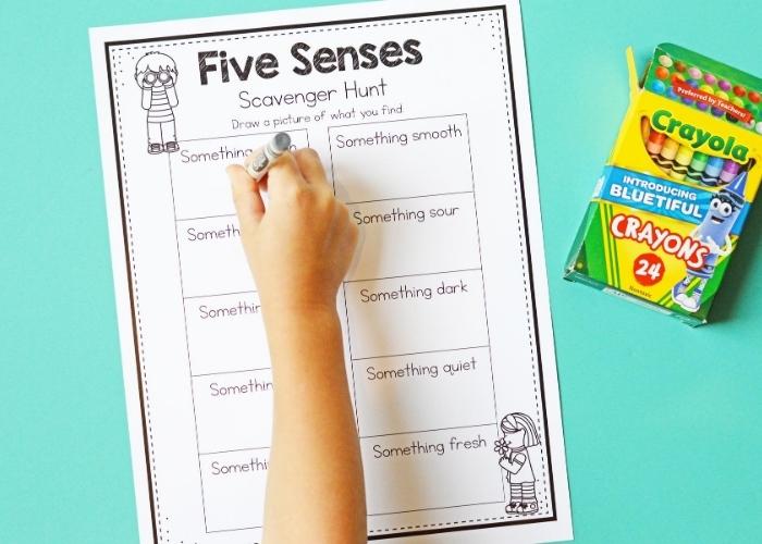 Preschool hand completing a five senses scavenger hunt activity sheet.