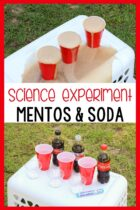 Science experiment with Mentos and Soda for kids.