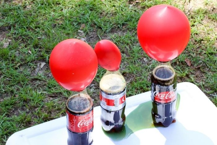 Balloons inflated on top of bottles of Coke.
