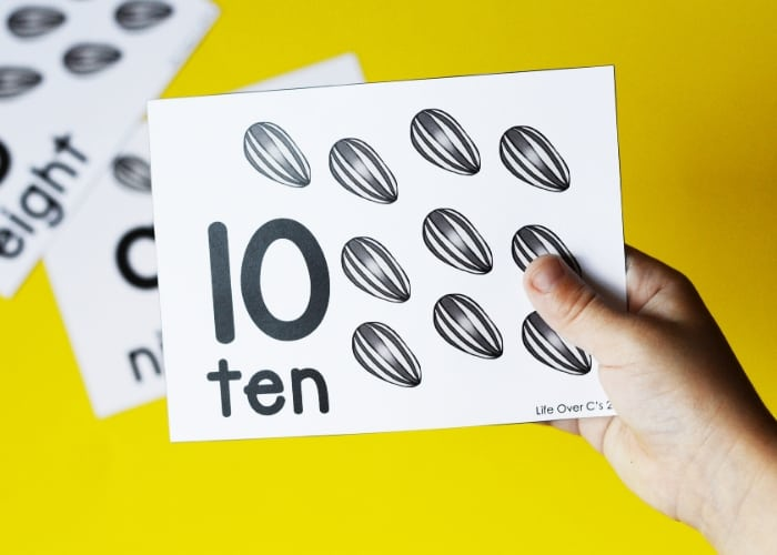 The number ten counting card with sunflower seeds.