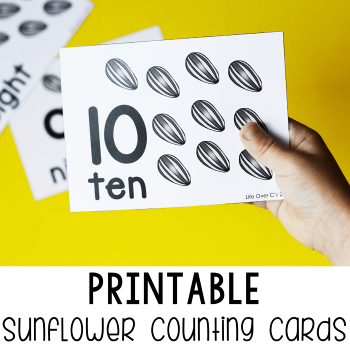 Sunflower Counting Cards