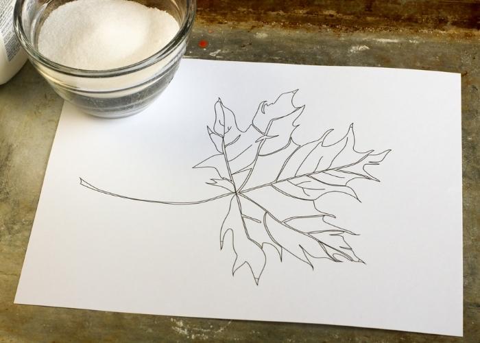 Overhead shot of a fall leaf outline and salt for fall leaf salt painting.