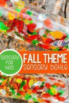Fall Theme Sensory Bottle For Kids