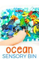 Preschool Ocean Sensory Bin Activity