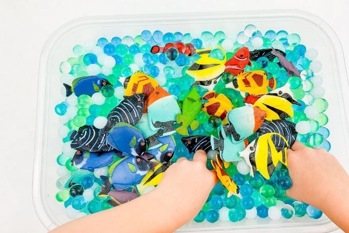 Kid playing with a fish in the ocean theme sensory bin.