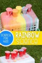 Rainbow science experiment with soda and mentos for preschoolers.