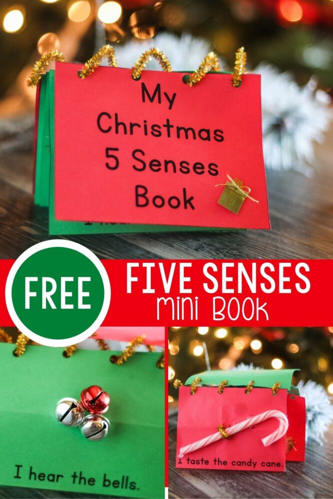 Christmas Five Senses Book Activity for preschoolers.
