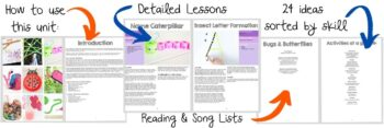 A detailed overview of the bug and butterfly lesson plan layout.
