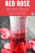 Red rose sensory bottle DIY.