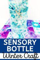 Easy Sensory Bottle Winter Craft