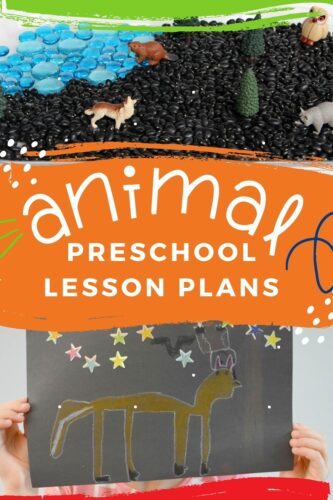 Amazing Animal Preschool Lesson Plans
