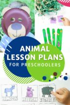 Animal Lesson Plans for Preschoolers